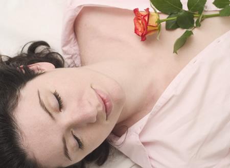 rosebed1.jpg